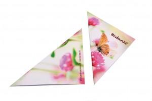 foto-vlinderbloemen-2